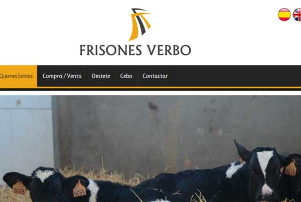 Frisones Verbo